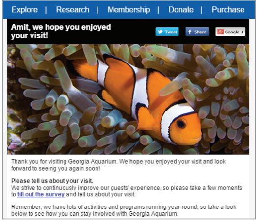 Georgia Aquarium follow up email