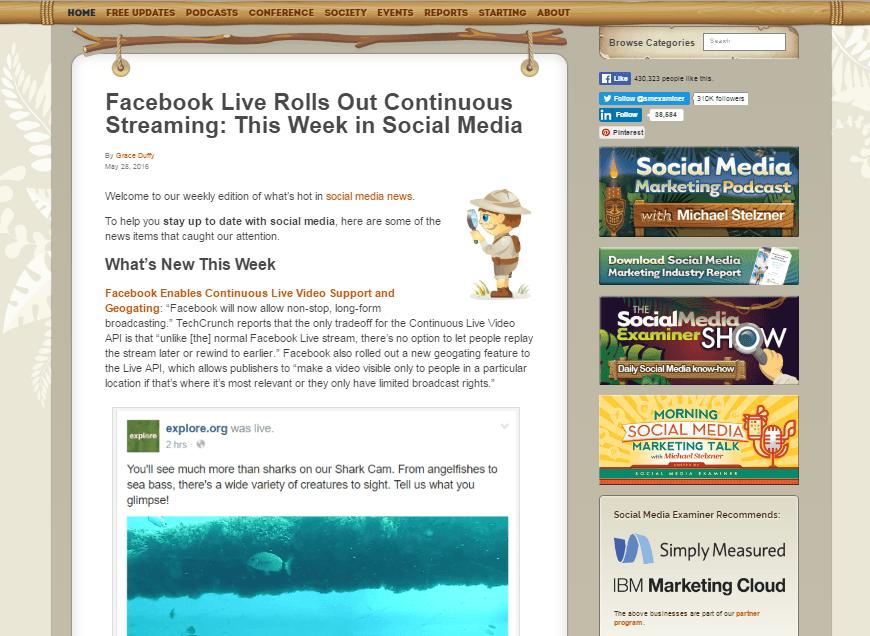 social media examiner template