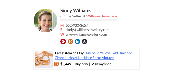Wisestamp email signature template online seller