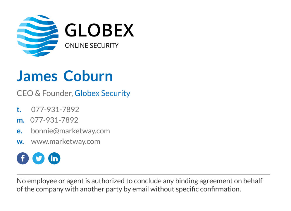 Corporate CEO email signature with disclaimer