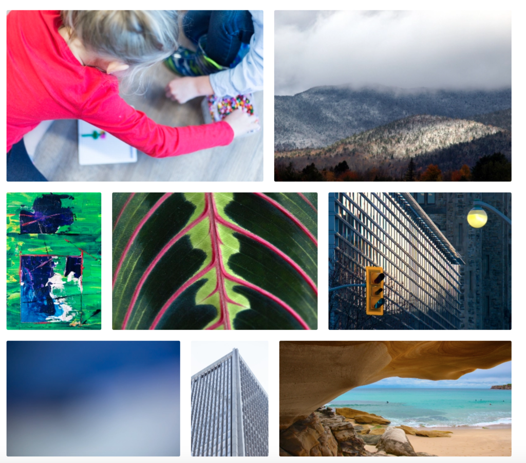 collage of photos from Stocksnap