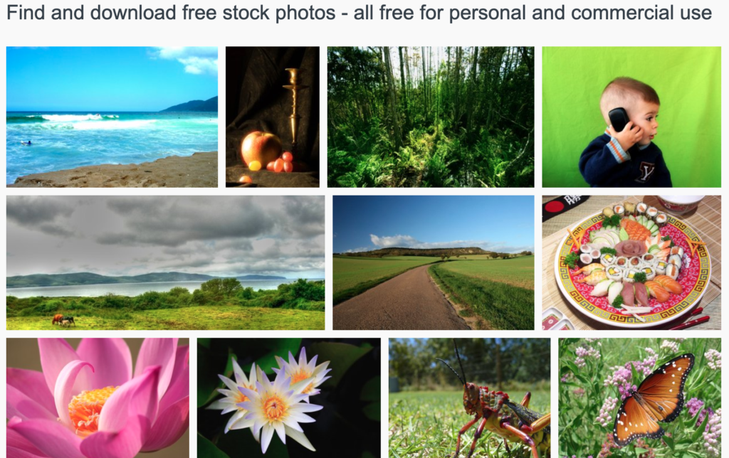 Collage of different photos on free photos