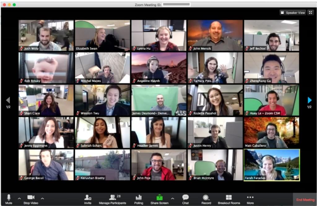 review of the best video conference softwares